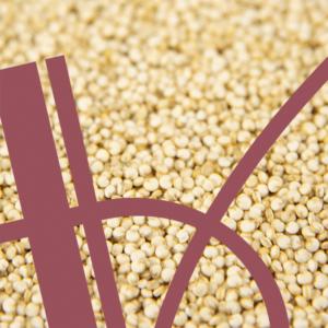 Getreidebeilagen